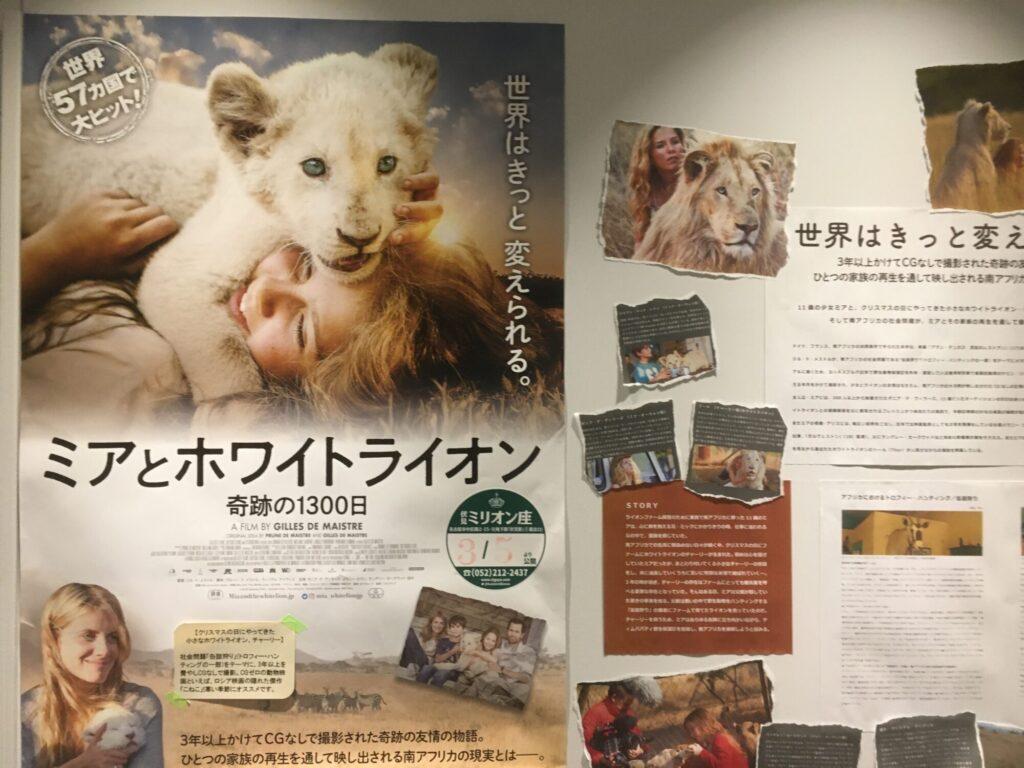 ホワイトライオン1